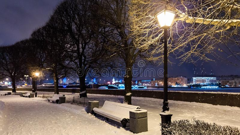 Benches under snow along alley with trees and street lights on embankment. Winter cityscape at twilight. Saint Petersburg, Russia. stock photos