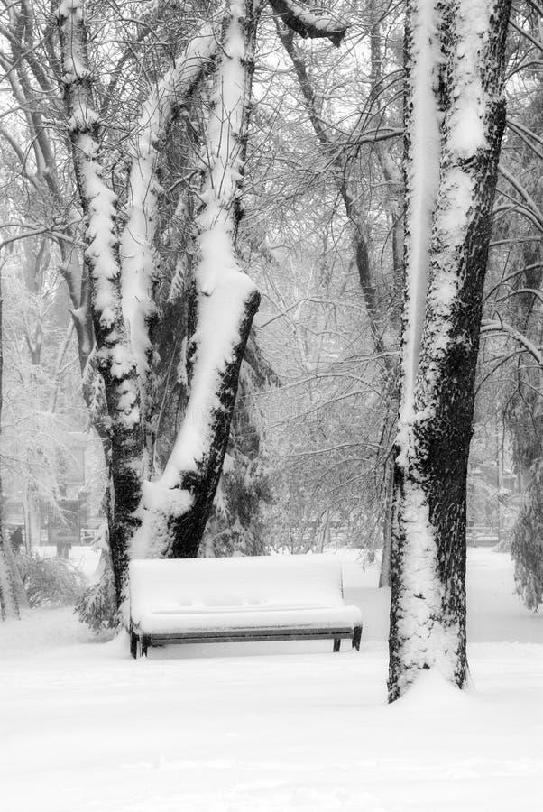 Download Benchs en nieve foto de archivo. Imagen de paisaje, cubierto - 7284664
