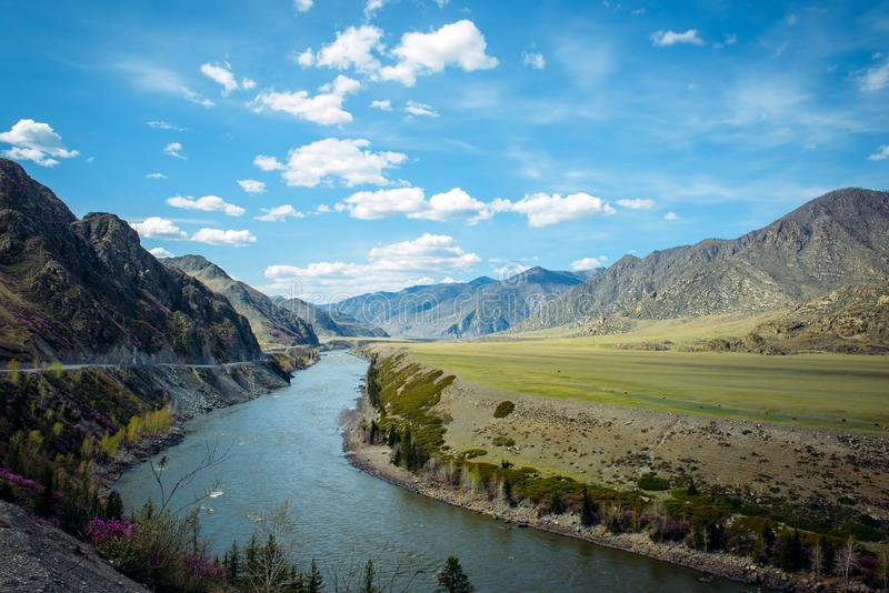 Bend of the Katun river, Chui tract, road to Mongolia. Beautiful mountain landscape on a sunny spring day. Concept of travel stock image