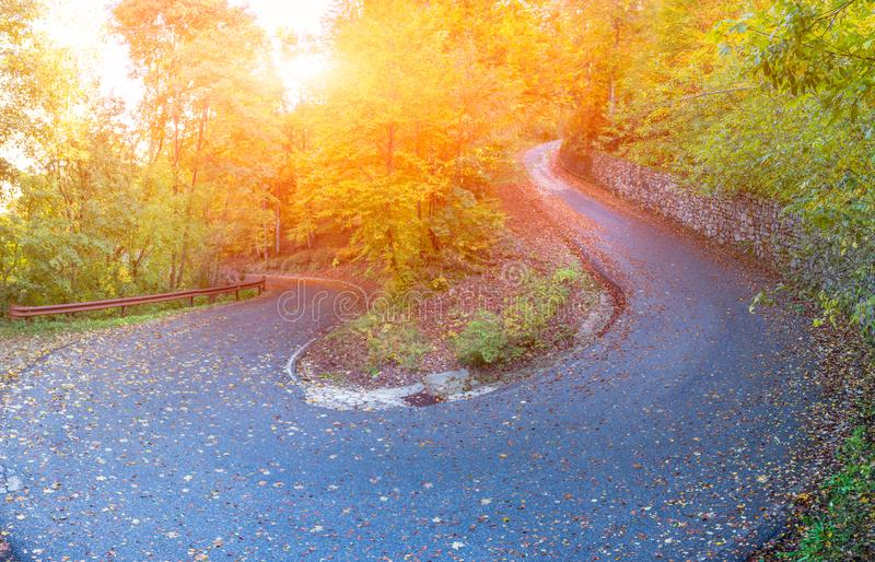 Bend in mountain road in the forest royalty free stock photography