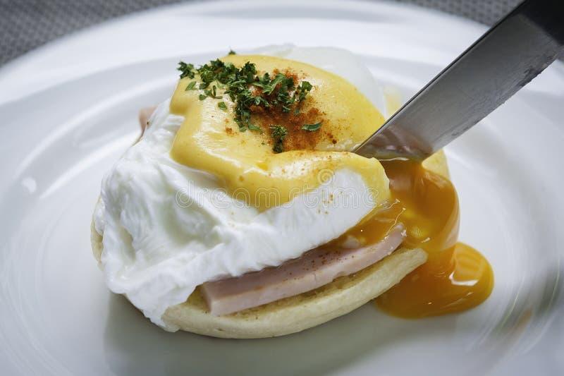 benedict ägg arkivfoto