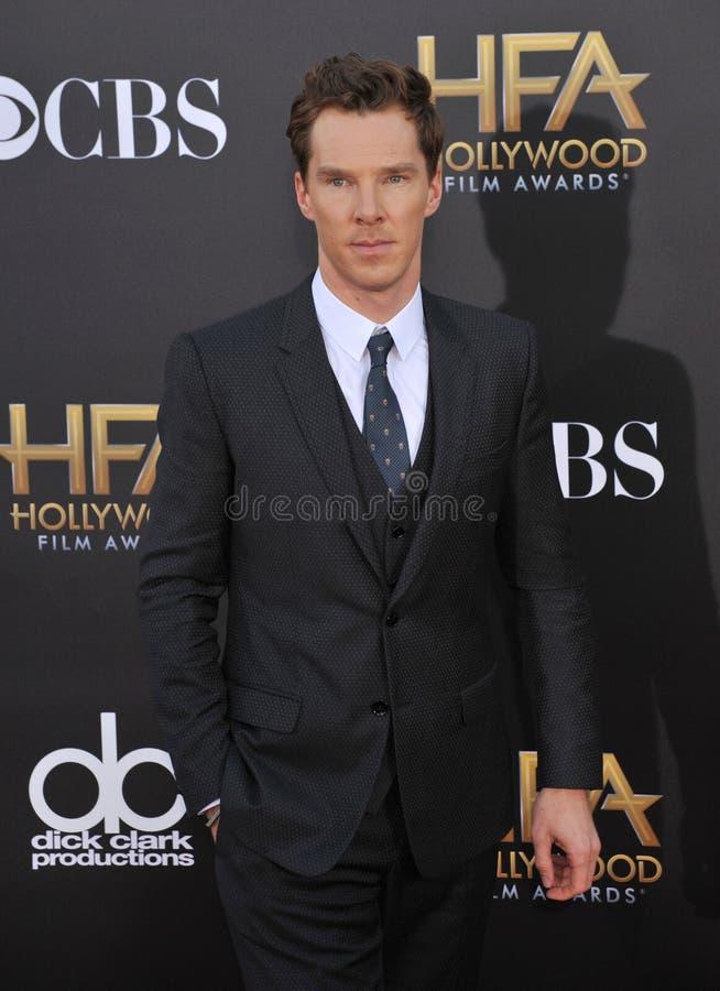 Free Benedict Cumberbatch Stock Photography - 48119542