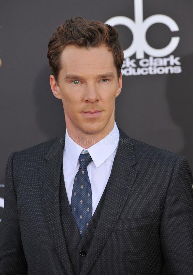 Free Benedict Cumberbatch Royalty Free Stock Images - 48119559