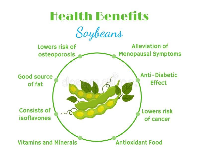 Benefícios de saúde dos feijões de soja Nutrição eco-amigável natural do vegetariano Estilo liso ilustração stock