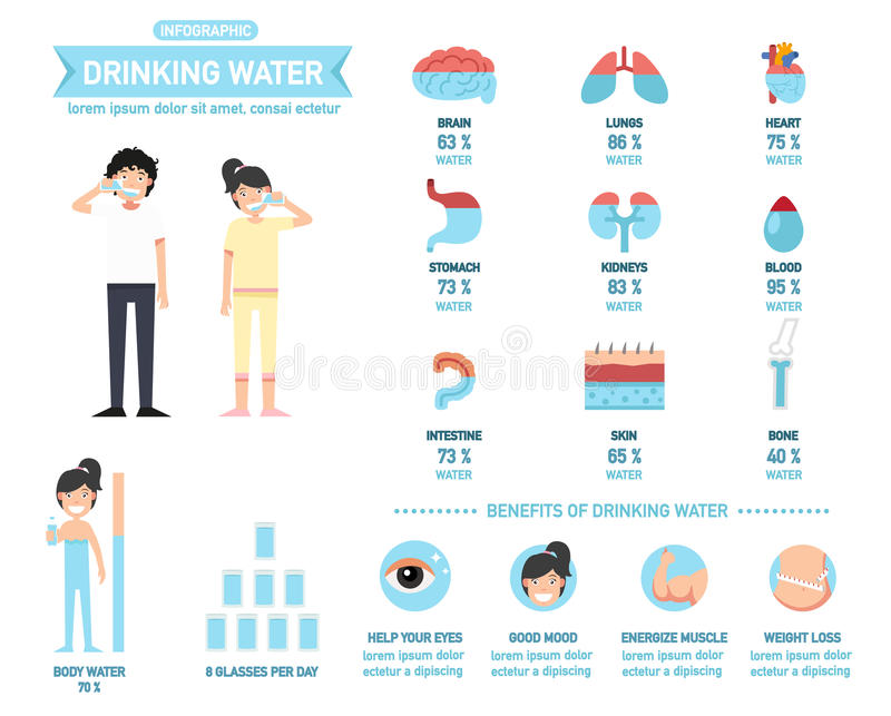 Benefits of drinking water infographics-body water, vector royalty free illustration