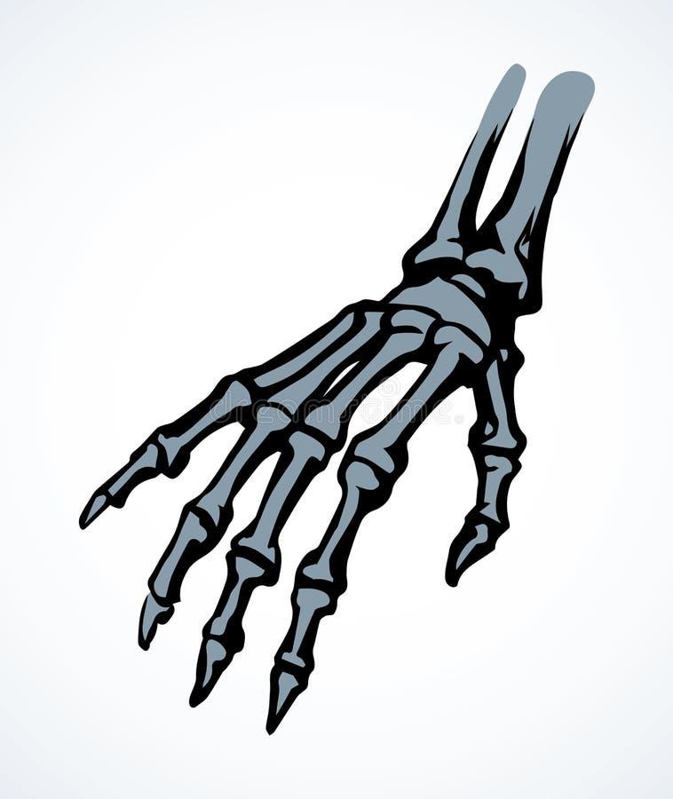 Benen av handen bakgrund som tecknar den blom- gr?svektorn vektor illustrationer