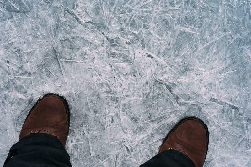 Benen på isen royaltyfri bild