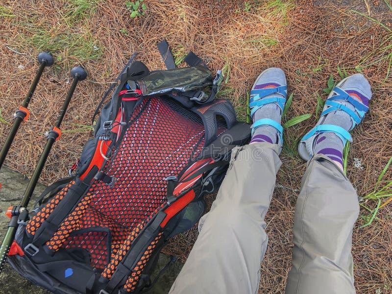 Benen, rugzak en trekkingsstokken, wandelingspolen op de achtergrond Actieve en gezonde levensstijl in de zomer stock afbeelding