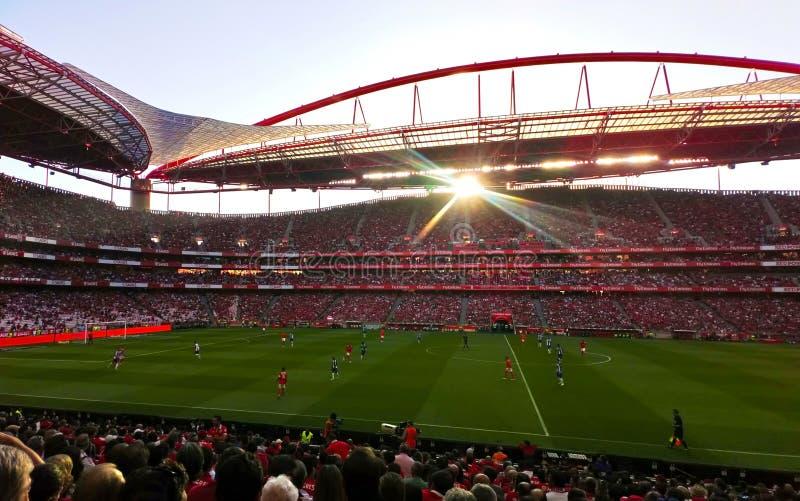 Benfica fotbollstadion, fotbollarena, folkmassa, spelare och röda och blåa europeiska lag för domare, arkivfoton