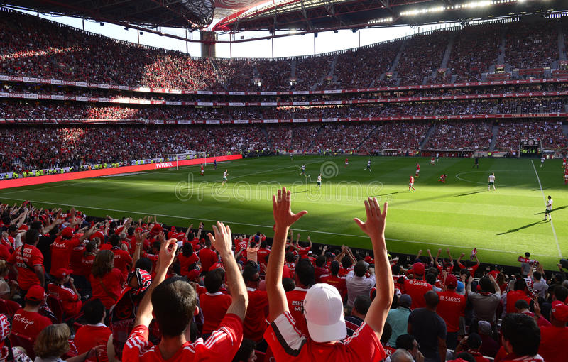 Soccer Fans, Red Crowd, Benfica Stadium, Football Players royalty free stock images