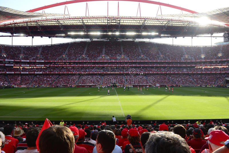 Soccer Crowd, Football Players and Fans, Benfica Stadium stock photography