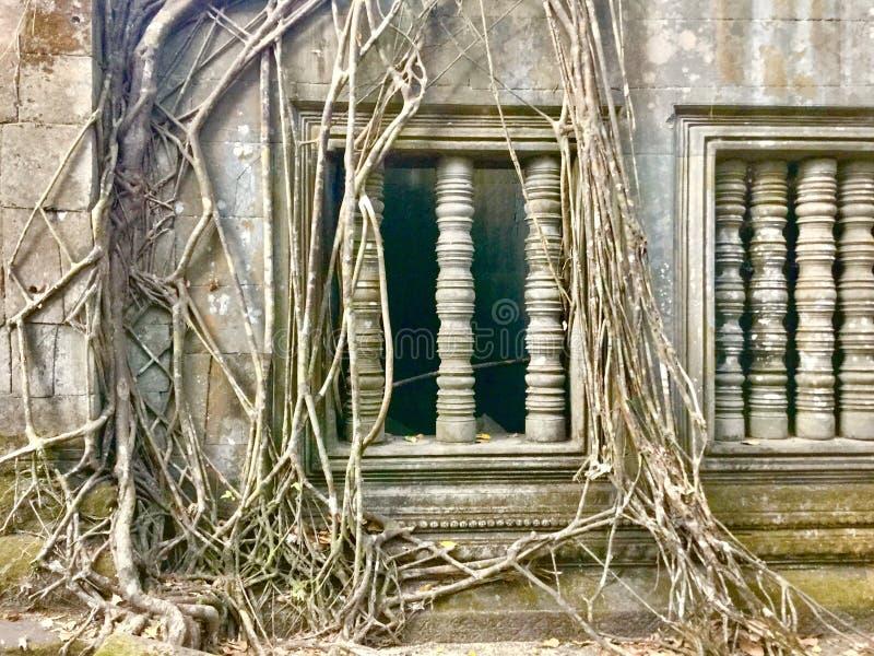 Beng Mealea Angkor Temple, Camboya fotos de archivo