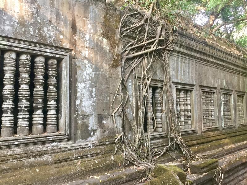 Beng Mealea Angkor Temple, Cambodia. Beng Mealea or Bung Mealea is a temple in the Angkor Wat period located 40 km east of the main group of temples at Angkor stock photos
