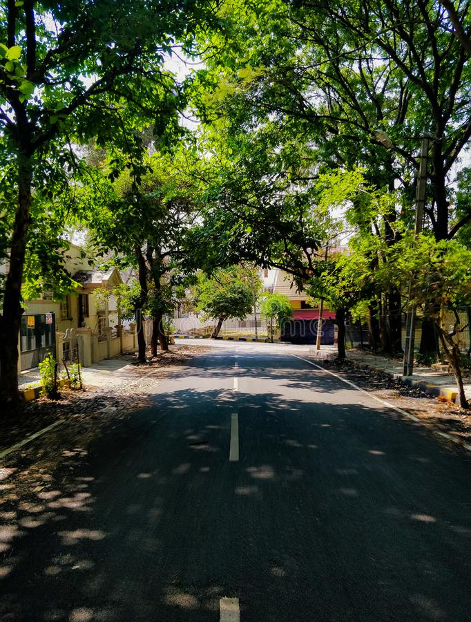 Bengaluru& x27; hortaliças de s foto de stock royalty free