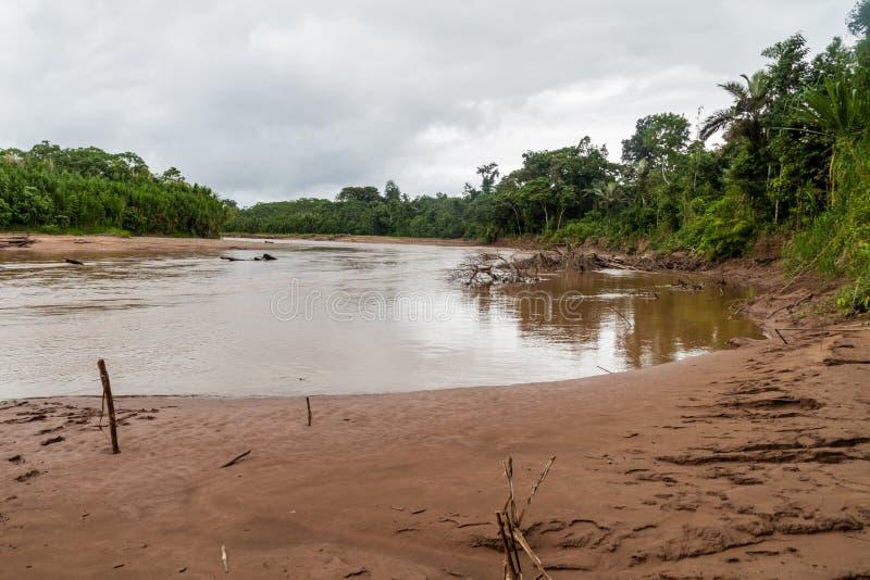 Beni river. In National Park Madidi, Bolivia royalty free stock photography