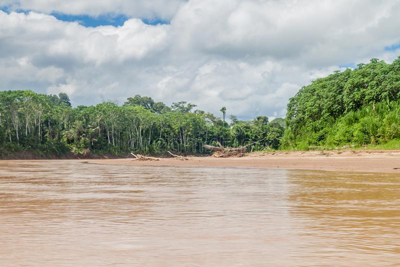 Beni river. In National Park Madidi, Bolivia royalty free stock image