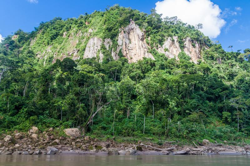 Beni river. In National Park Madidi, Bolivia stock image