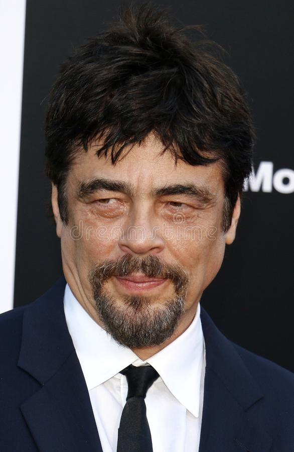 Free Benicio Del Toro Royalty Free Stock Photo - 120017175