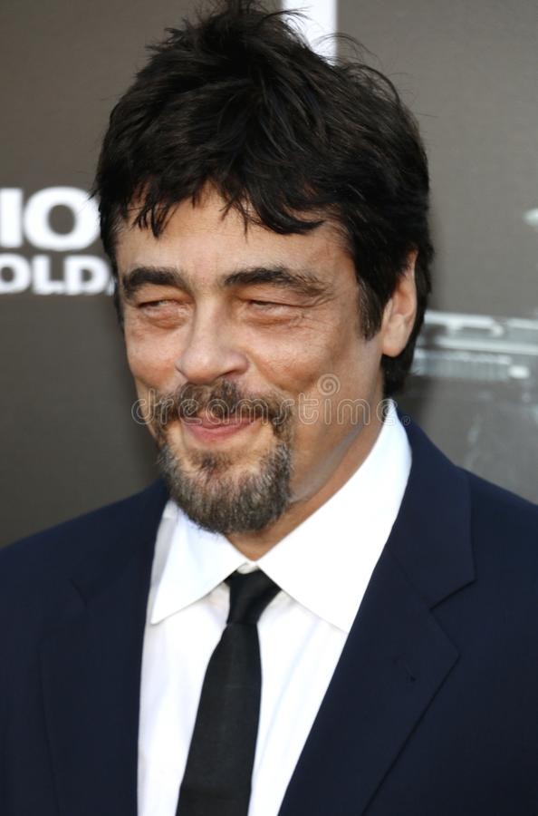 Benicio Del Toro lizenzfreies stockfoto