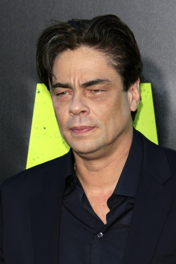 Benicio Del Toro   stockbild