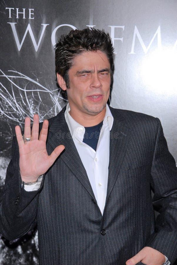 Benicio Del Toro stockfotografie