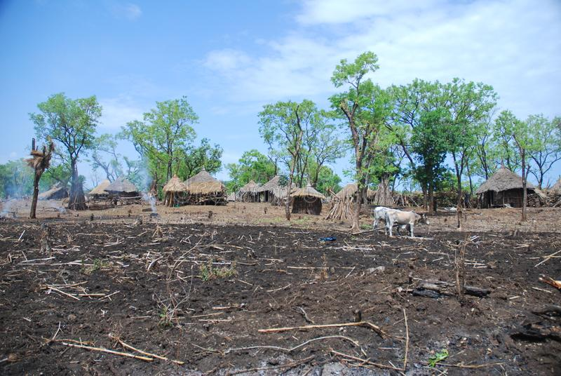 Benishangul Gumuz, Αιθιοπία: Αγροτικό χωριό στοκ εικόνες με δικαίωμα ελεύθερης χρήσης