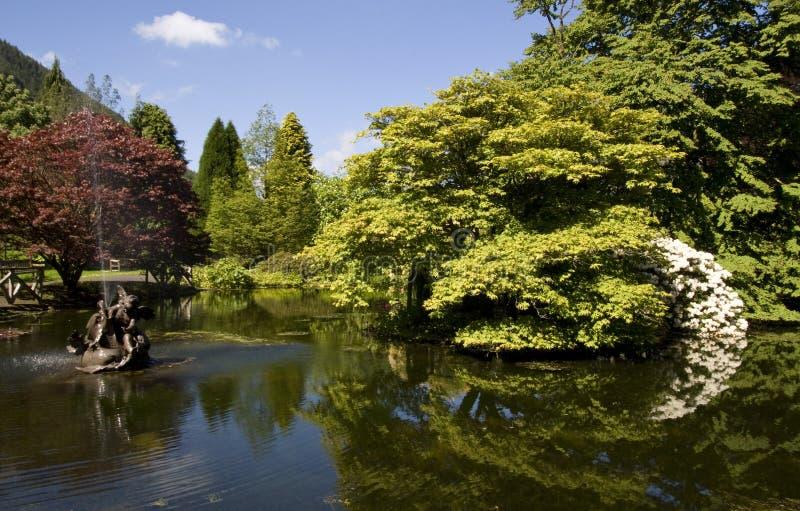 benmore βοτανικοί κήποι στοκ φωτογραφία με δικαίωμα ελεύθερης χρήσης