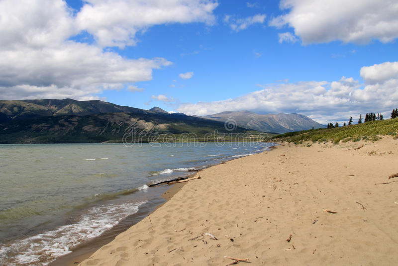 Bennett Lake, Carcross, Yukon, Canadá fotos de stock royalty free