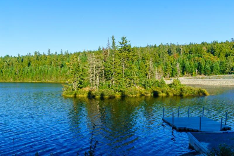 Bennett Lake, no parque nacional de Fundy imagens de stock