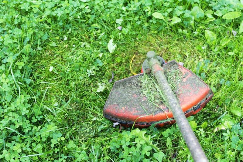 Bensingräsmattabeskäraren mejar saftigt grönt gräs på en gräsmatta, royaltyfri bild