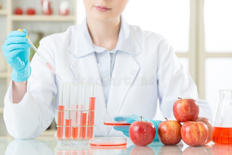 Bent zeker u het bent veilig om genetische modificatievoedsel te eten royalty-vrije stock foto's