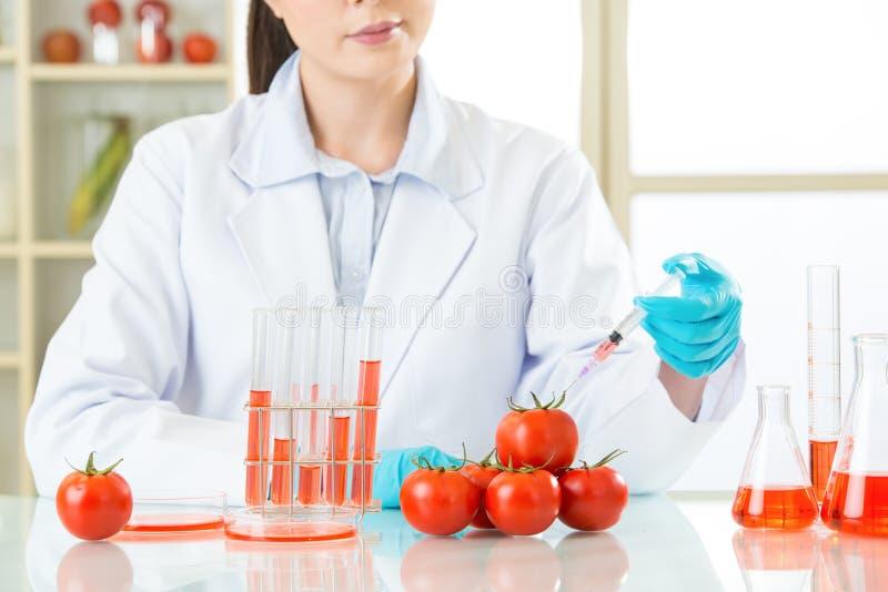 Bent zeker u het bent veilig om genetische modificatievoedsel te eten stock afbeelding
