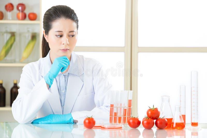 Bent zeker u het bent veilig om genetische modificatievoedsel te eten royalty-vrije stock afbeelding