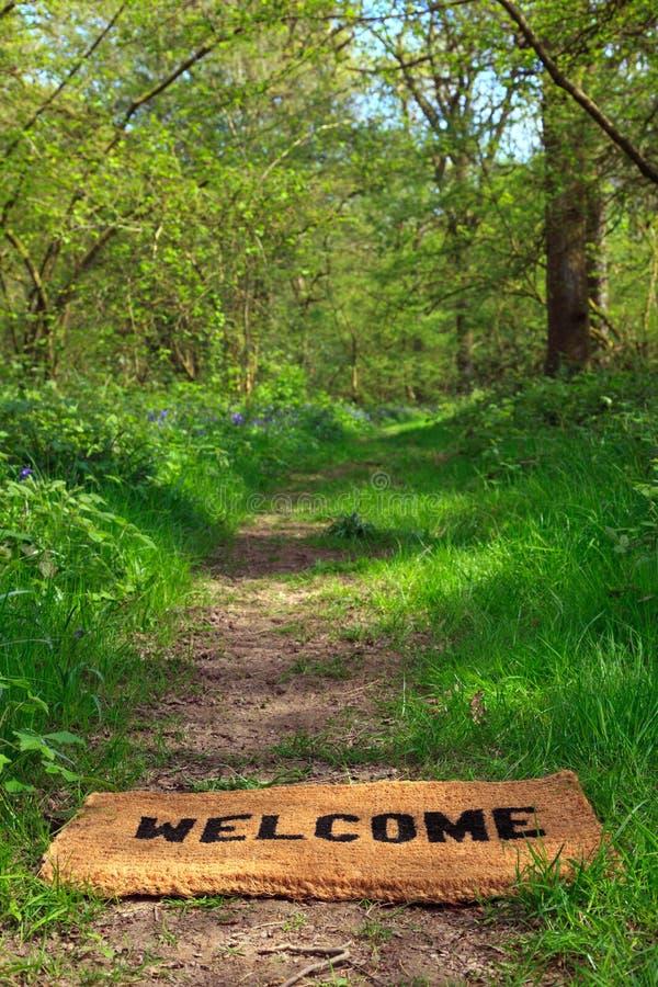 Benvenuto al verticale del terreno boscoso della sorgente. immagini stock