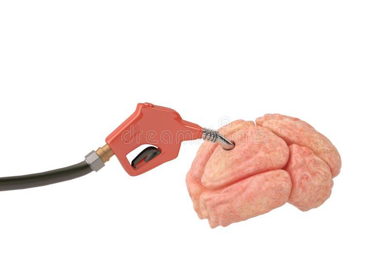 Benzinpumpe eingefügt in das Gehirn Abbildung 3D vektor abbildung