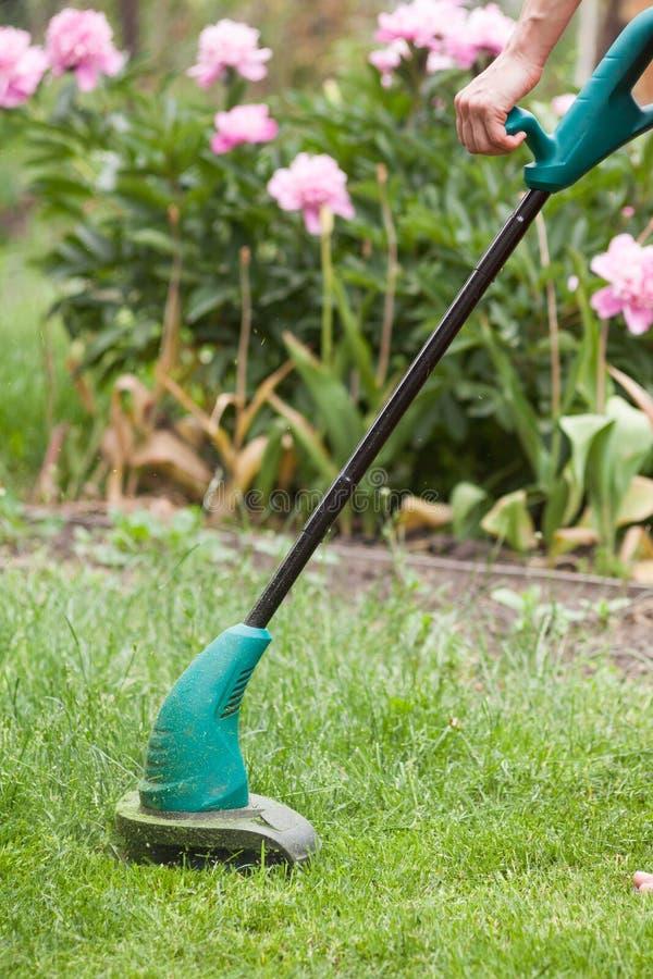 Benzyna gazonu drobiażdżarka kosi soczystej zielonej trawy na gazonie na pogodnym letnim dniu Ogrodowy wyposażenie obrazy stock