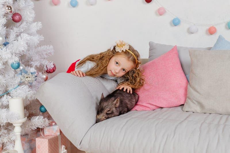 Berättelse för nytt år och julom lite flicka i festliga kläder och mini- svin Litet svinsymbol av 2019 _ arkivfoto