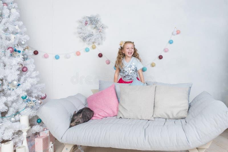 Berättelse för nytt år och julom lite happuflicka i rollen av prinsessan och det mini- svinet Litet svinsymbol av 2019 royaltyfria bilder
