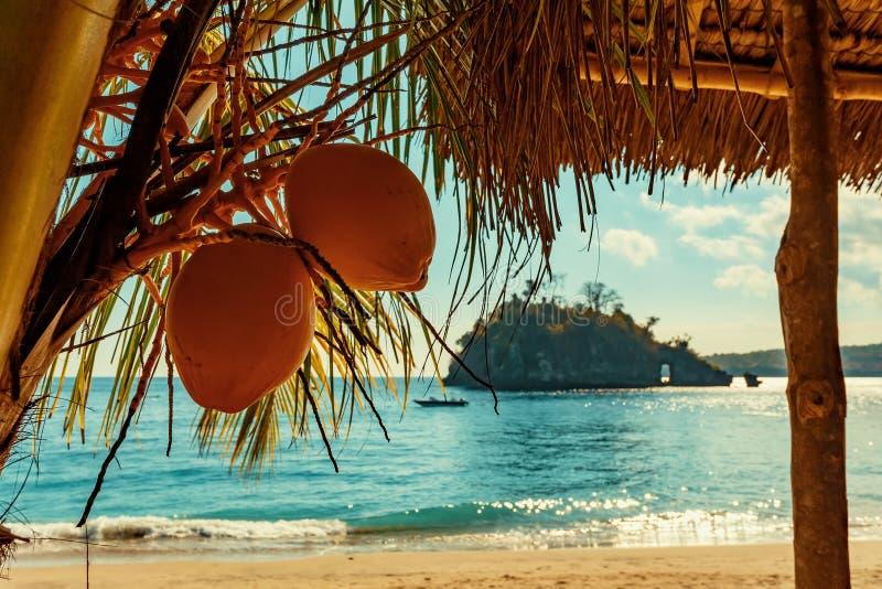Berömd Crystal strand på den Nusa Penida ön royaltyfria bilder