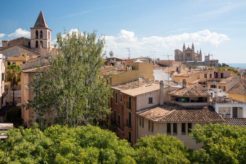 Berömd gotisk domkyrkaLa Seu, Palma de Mallorca, Spanien arkivfoto