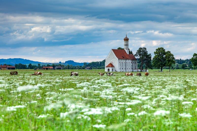 Berömd kyrka för St Coloman i härlig morgon med blommafältet i sommar royaltyfri bild