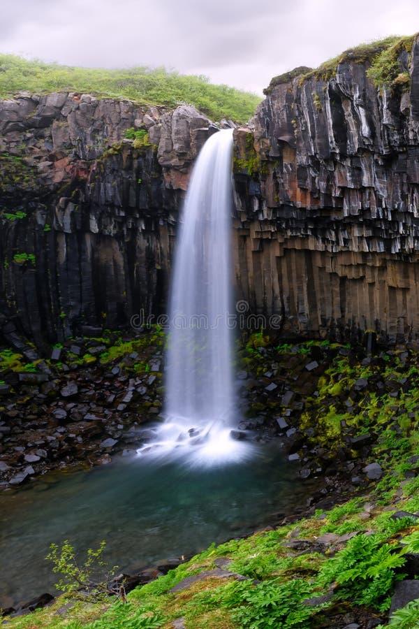 Berömd Svartifoss vattenfall royaltyfria foton