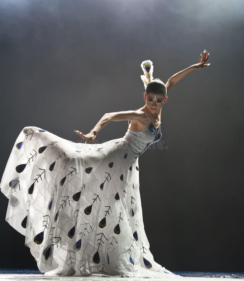 Berühmter Tänzer Yang Liping des Chinesen lizenzfreies stockbild