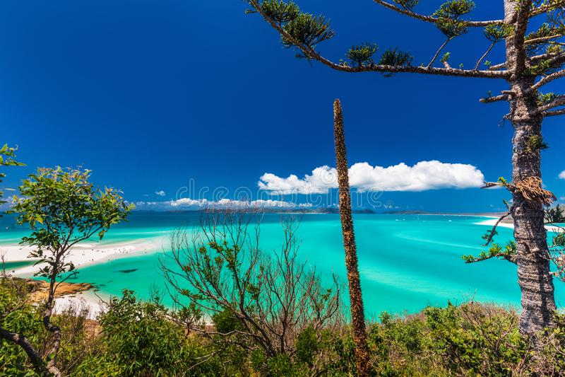 Berühmter Whitehaven-Strand in den Pfingstsonntagsinseln, Queensland, A lizenzfreie stockfotos