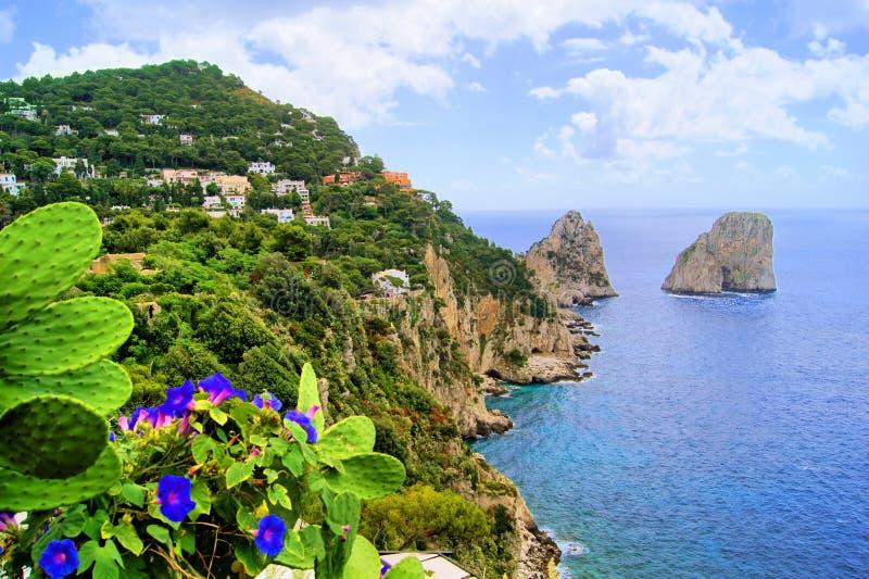 Capri Küste lizenzfreie stockbilder