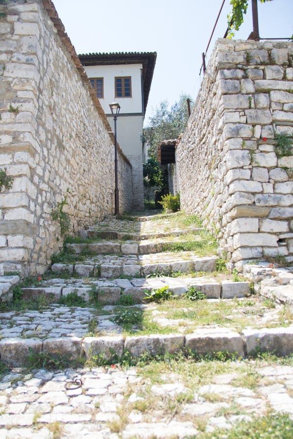 Berat stary miasteczko i Osum Świętej trójcy rzeczny kościół od Berat Roszujemy w Albania, Czerwiec 2018 zdjęcie royalty free