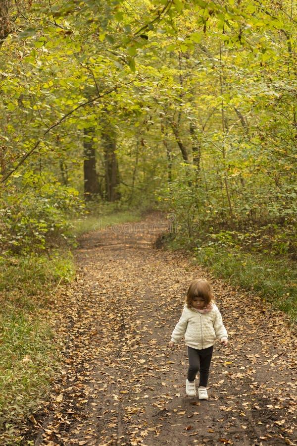 Berbeć dziewczyny odprowadzenie w drewnach w jesieni fotografia stock