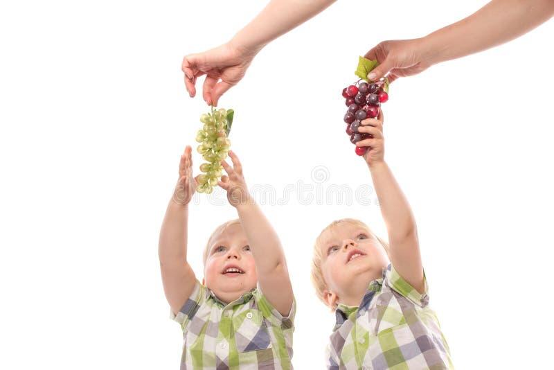 Berbeci bliźniacy dosięga dla winogron zdjęcie stock