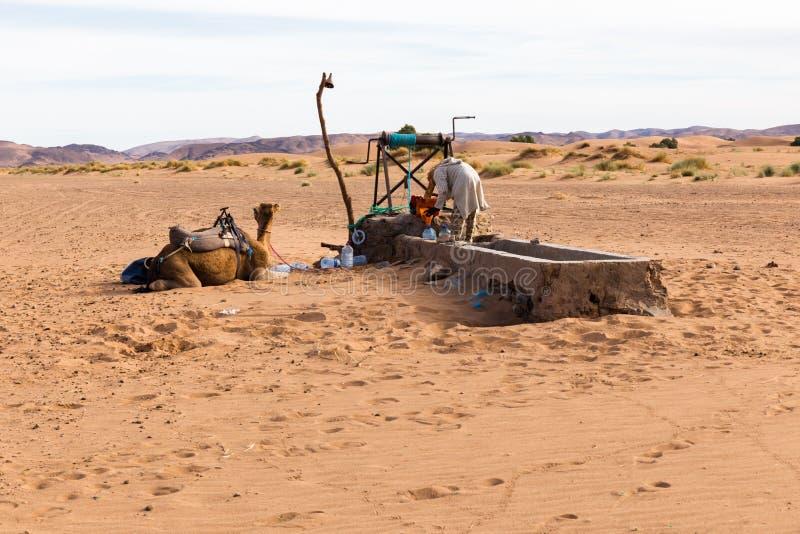 Berber en kameel dichtbij de put royalty-vrije stock foto