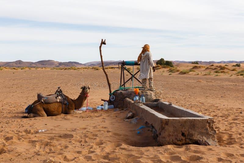Berber en kameel dichtbij goed, Marokko stock afbeelding